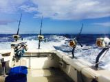 Deep Sea Fishing in Kauai