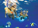 Molokini Wild Side Eco Adventure