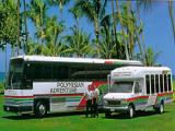 Oahu Sightseeing tour