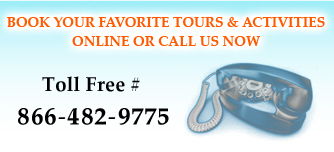 Call Buzz Hawaii to book your Hawaii Tours, Hawaii Adventures and Hawaii Activities